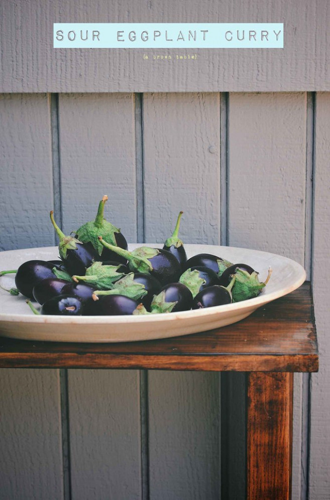 eggplants - eggplant recipes vegetarian