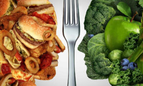 Essay On Junk Food Vs Healthy Food For Students & Children ..