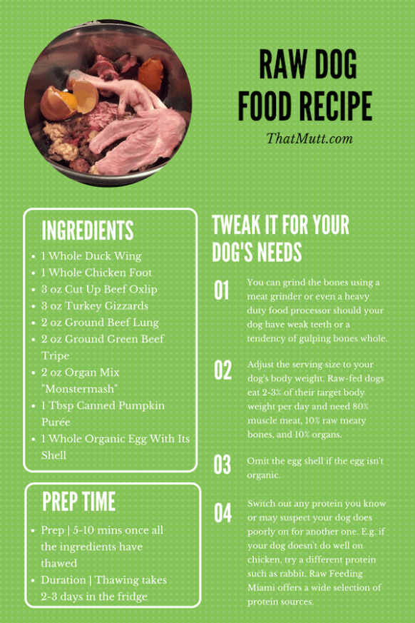 Example of Balanced Raw Dog Food Recipe - Easy to Follow - recipes raw food diet for dogs