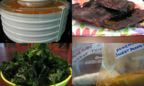 » Falling In Love With My Food Dehydrator – Dehydrated Food Recipes