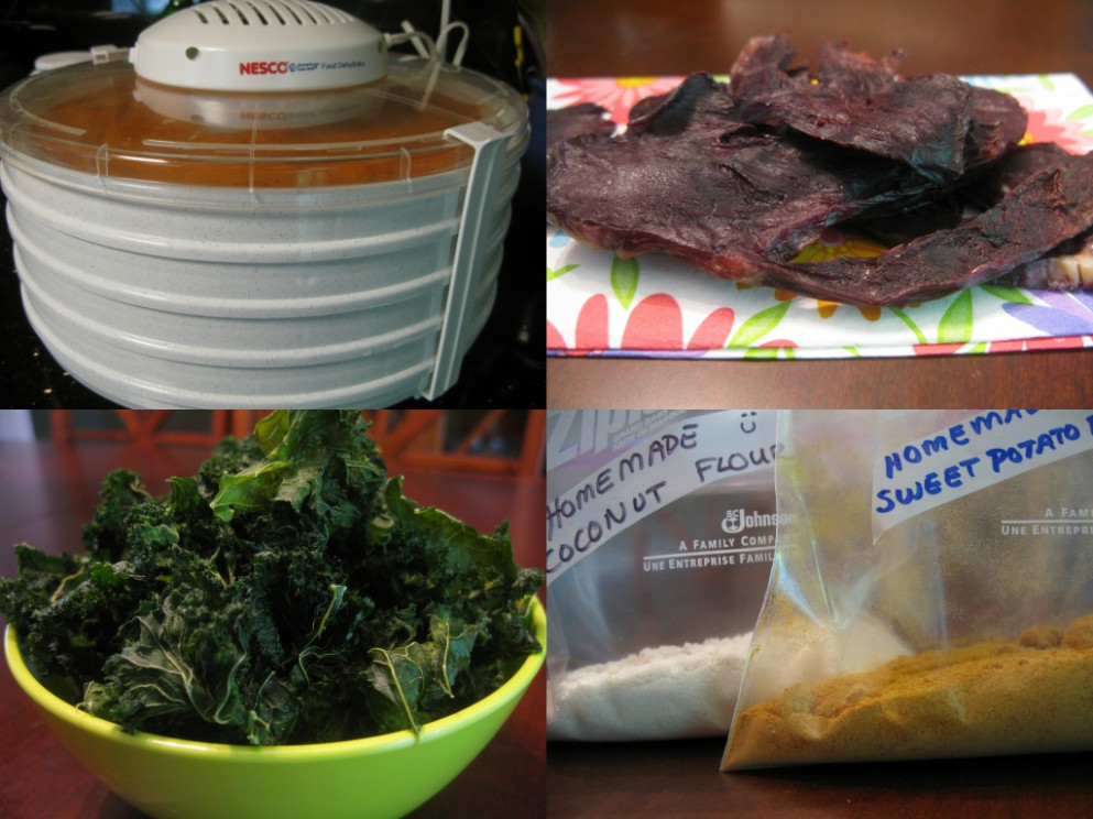 » Falling In Love With My Food Dehydrator - Dehydrated Food Recipes