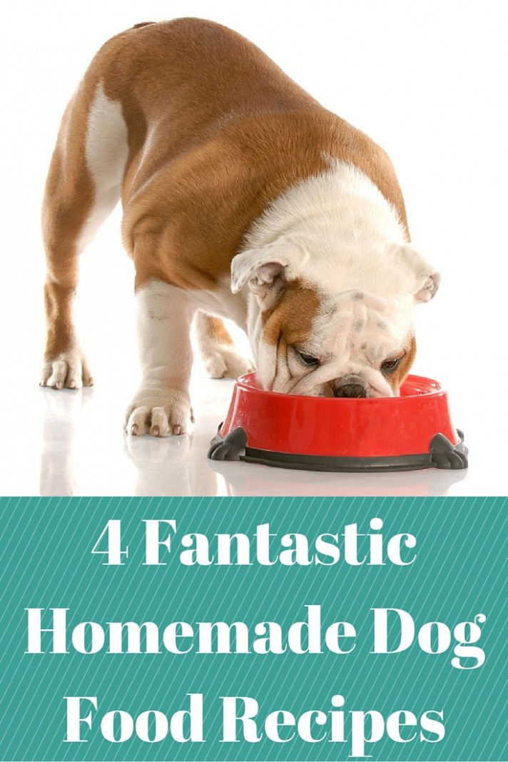 Fantastic Homemade Dog Food Recipes Your Pet Will Love | Dog ..