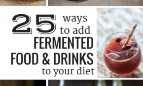 Fermented Food And Drink Recipes – The Wild Gut – Food And Drink Recipes