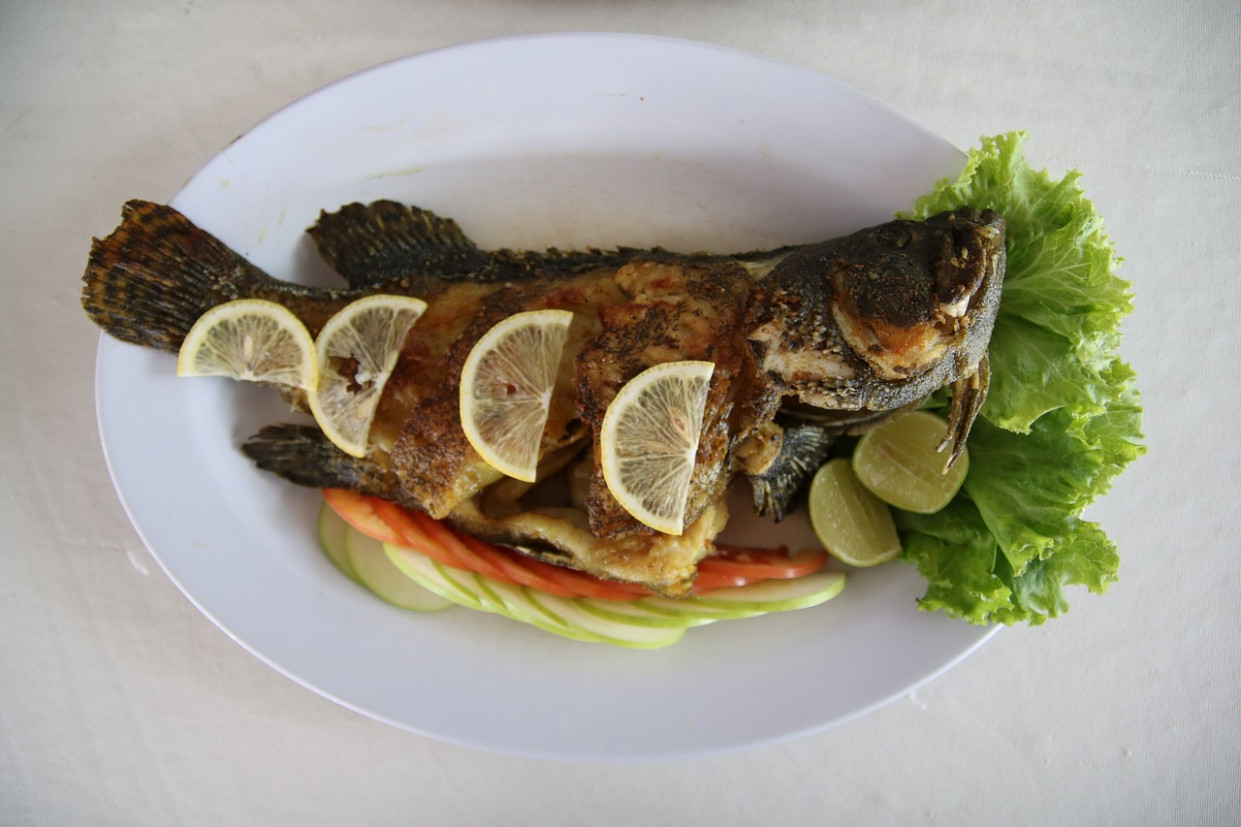 Fish, Grill, Food, Healthy, Dinner, Cook - dinner recipes grill