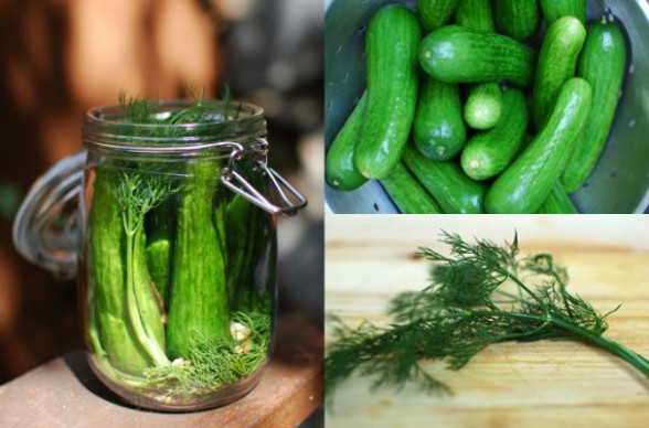 Foodista | 5 Must-Read Blog Posts: Pickling and Preserving - chicken recipes mexican
