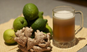 Ginger Beer Recipe | Serious Eats – Food Recipes Using Ginger Beer