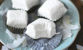 Healthy Coconut Fudge (low Fat) – Desserts With Benefits – Dessert Recipes That Are Healthy