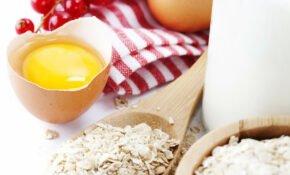 Healthy Eggs! – Windmeul Eggs | Humpty Dumpty Eggs | Free ..