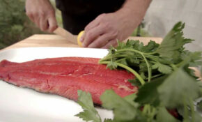 Healthy Smoked Salmon Recipe By Traeger Grills – Healthy Recipes Salmon