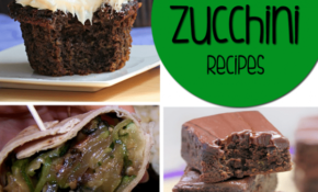 Healthy Zucchini Recipes – 15 Delicious Ways To Eat Zucchini! – Healthy Zucchini Dessert Recipes