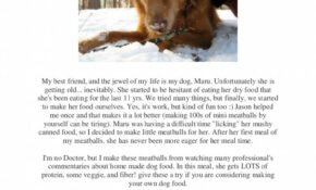 Home Made Dog Food Recipe – Recipes To Make Your Own Dog Food