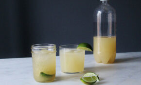Homemade Alcoholic Ginger Beer Recipe On Food52 – Food Recipes Using Ginger Beer