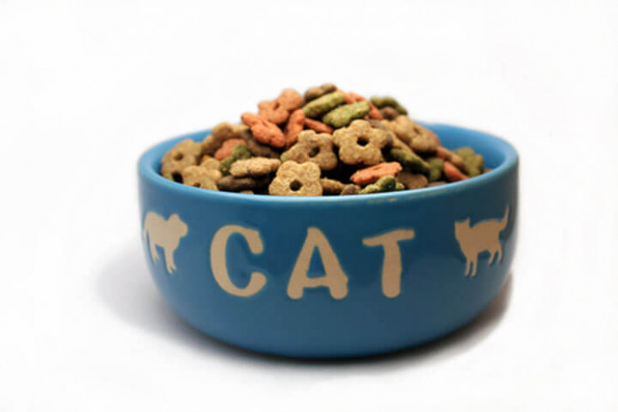 Homemade Cat Food Recipes - CDKitchen - recipes homemade cat food