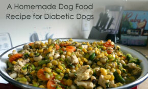 Homemade Diabetic Dog Food Recipe – Ruby Stewbie – Food Recipes For Dogs