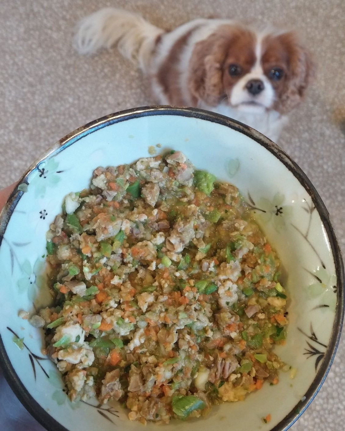 Homemade dog food chicken and heart recipe - All recipes UK - recipes diabetic dog food