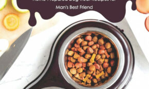 Homemade Dog Food Cookbook: Home-Prepared Dog Treat Recipes ...