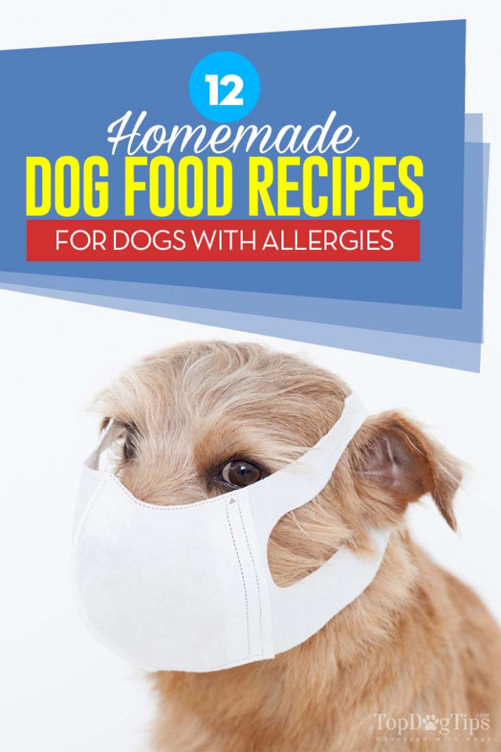 Homemade Dog Food Recipes For Dogs With Allergies Alluvian ..
