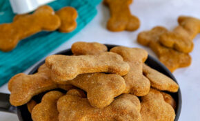 Homemade Dog Treats – Recipes To Make Hypoallergenic Dog Food