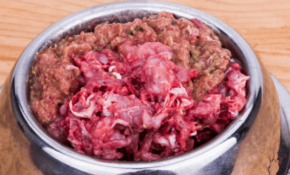 Homemade Raw Dog Food Recipes | How To Feed Raw Dog Food ..