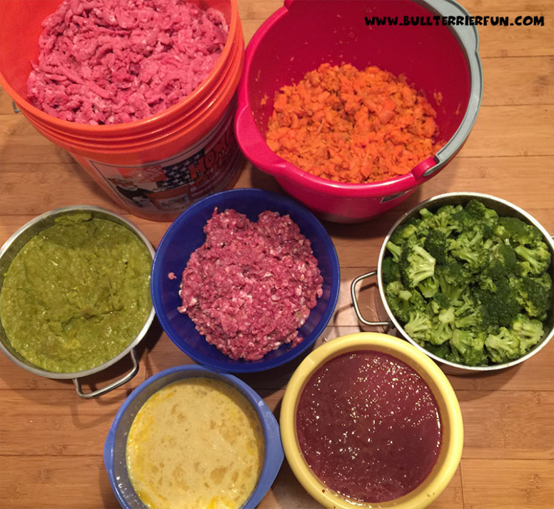 Homemade Raw Food Recipe For Dogs - Recipes For Dog Food