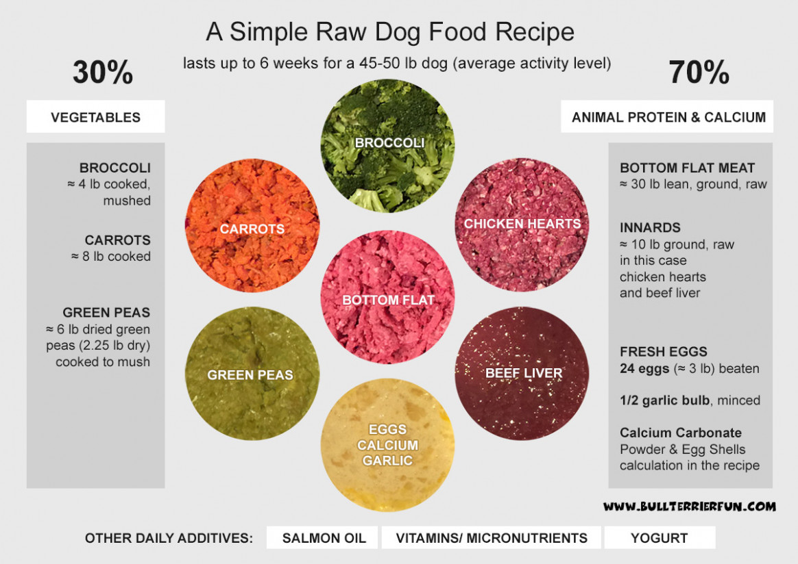 Homemade raw food recipe for dogs - recipes raw food diet