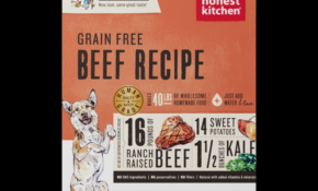 Honest Kitchen Beef Recipe Dehydrated Raw Dog Food – Recipes Raw Dog Food