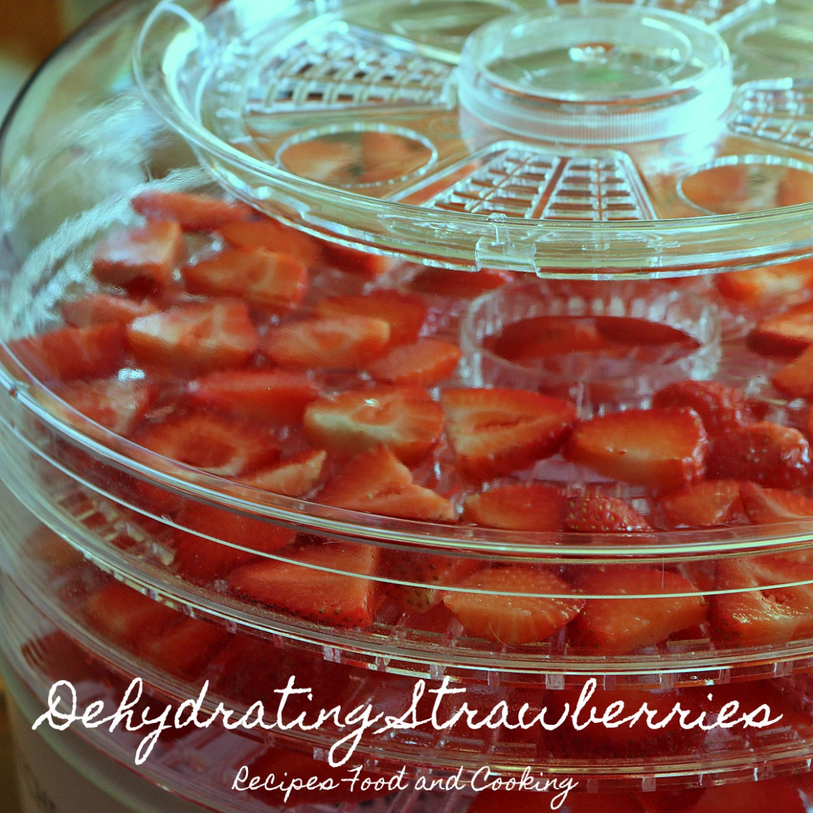 How To Dehydrate Strawberries - dehydrated food recipes