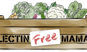 How To Eat Lectin Free On Vacation (With Grocery List ..