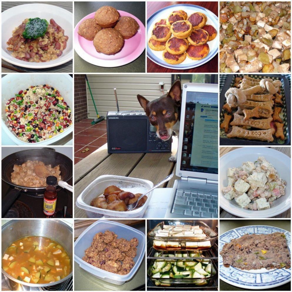 How To Make Homemade Food For Dogs PetHelpful Ways To Cook ...