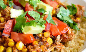 Instant Pot Mexican Chicken Recipe – Chicken Recipes You Can Freeze