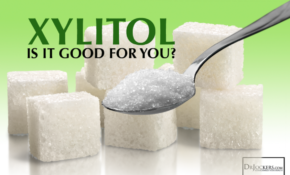 Is Xylitol Good For You? – DrJockers