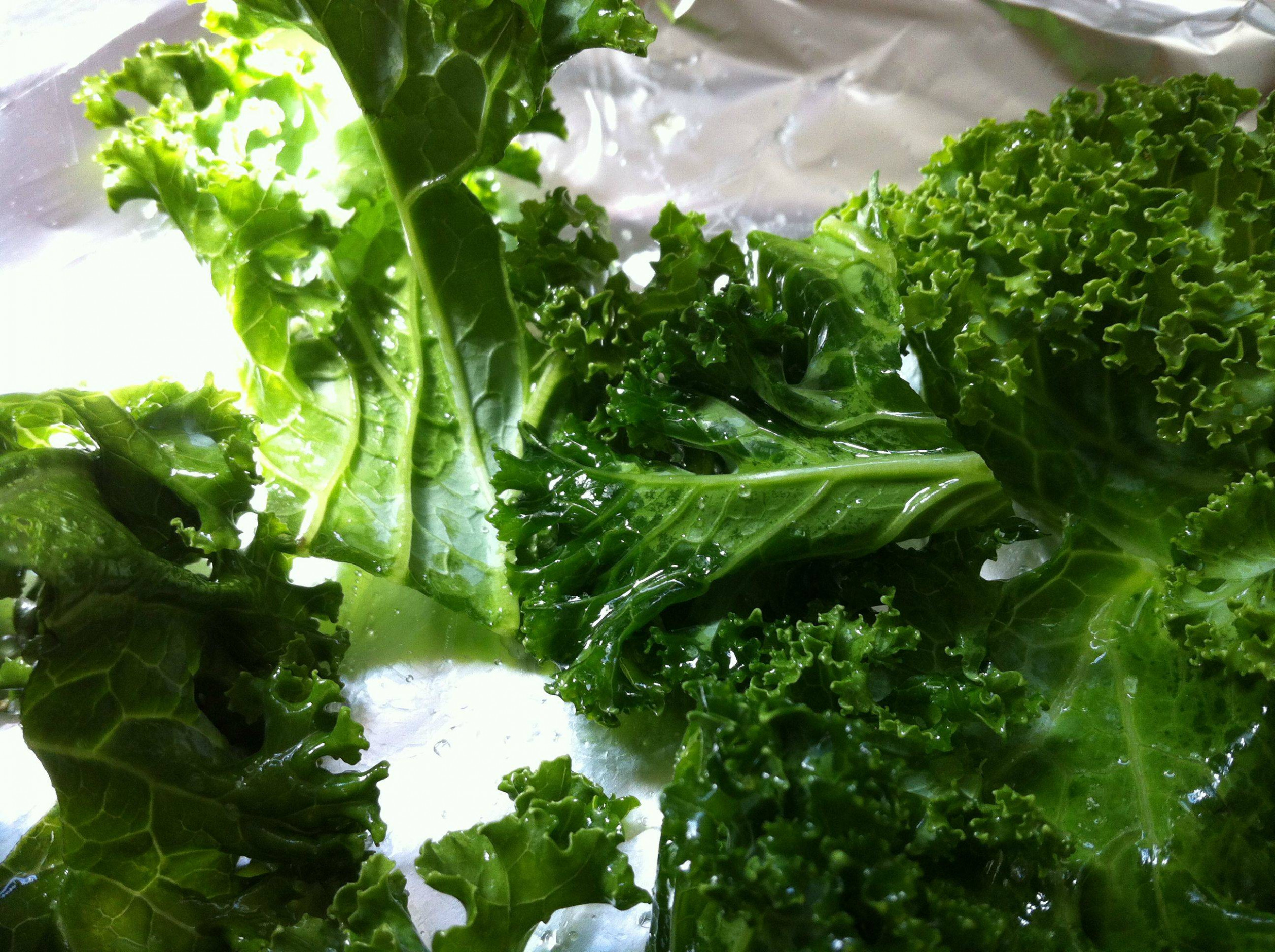 Kale Chips Recipe: Healthy, Yummy, and Easy to Make - Oh ..