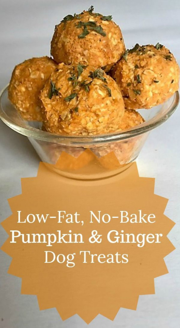 Low Fat, No Bake Pumpkin and Ginger Dog Treats | For the ..