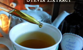 Make Your Own Non Processed Stevia Extract & Why I Do It – Recipes No Processed Food
