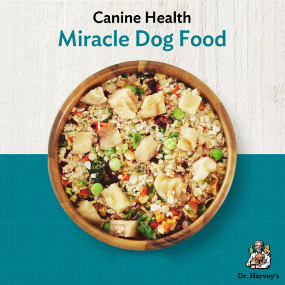 Making Miracles with Homemade Dog Food | Dr
