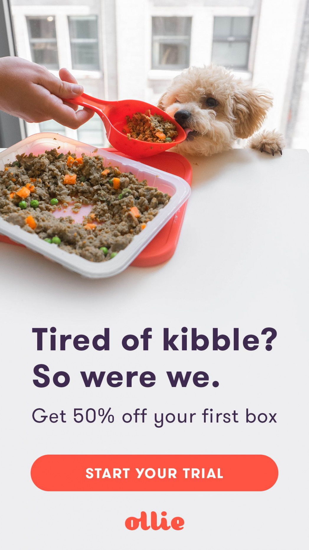 Meet Ollie - Human Grade Dog Food, Tailored To Your Dog's ..