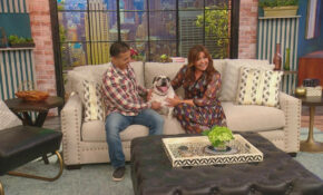Meet The Bulldog Named...Rachael Ray! | Rachael Ray Show