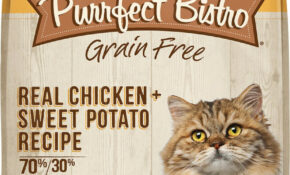Merrick Purrfect Bistro Grain Free Real Chicken + Sweet Potato Recipe Adult  Dry Cat Food, 13 Lb Bag – Cat Food Recipes