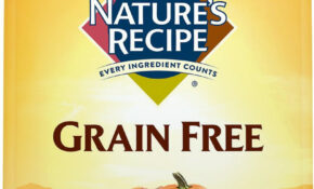 Nature's Recipe Grain Free Chicken, Sweet Potato & Pumpkin Recipe Dry Dog  Food, 13 Lb Bag – Recipes For Dog Food