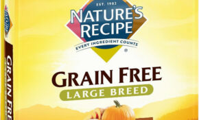 Nature's Recipe Large Breed Grain-Free Chicken, Sweet Potato & Pumpkin  Recipe Dry Dog Food, 15-lb bag