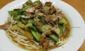 Noodle Soup For The Needy – Udon Noodle Recipes Chicken