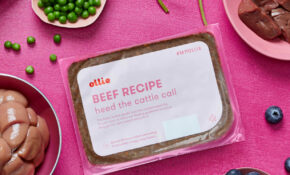 Ollie | Our Recipes – Food Recipes And Ingredients
