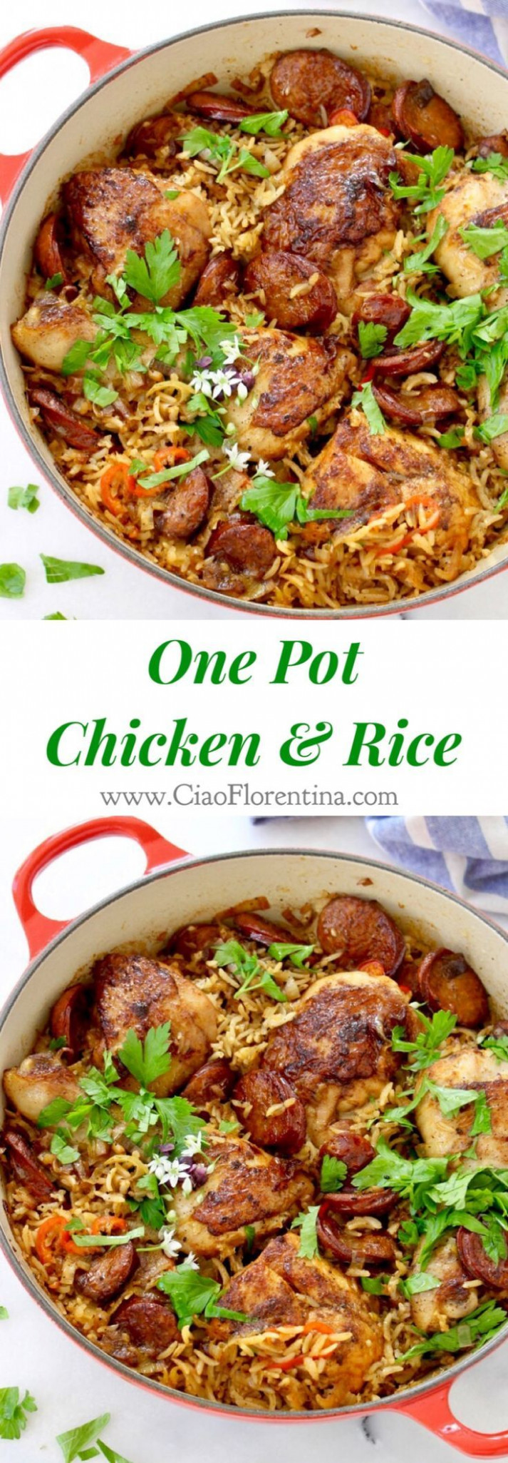 One-Pot Chicken And Brown Rice Recipe — Dishmaps - chicken recipes one pot