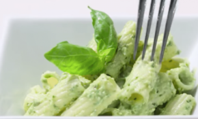 Plant Based Recipes For Beginners? Here Are 13 Recipe Videos ..