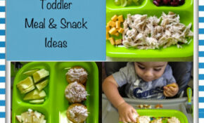 Quick And Healthy Baby Food Ideas – Wildly Charmed – Toddler Food Recipes For 2 Year Old