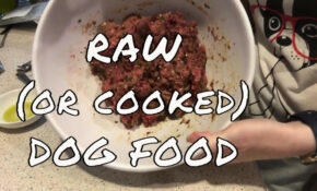 Raw Dog Food Recipe Homemade Cooked Dog Food Recipe Fully Balanced  Nutrition Dr