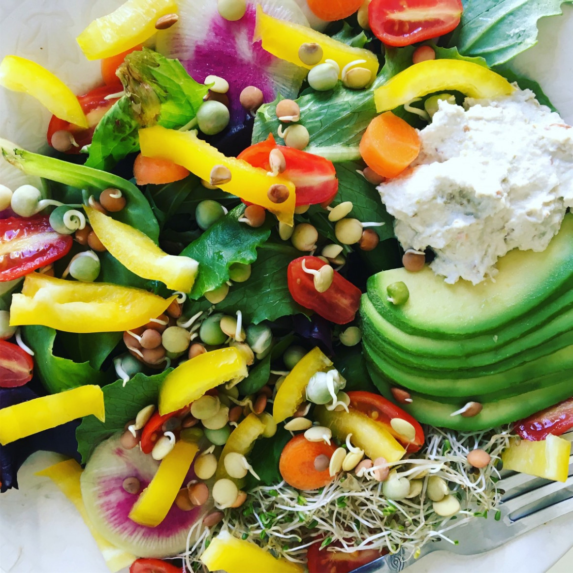 Raw Food Diet Plan Plus 12 Recipes to Get Started - DOES IT ..