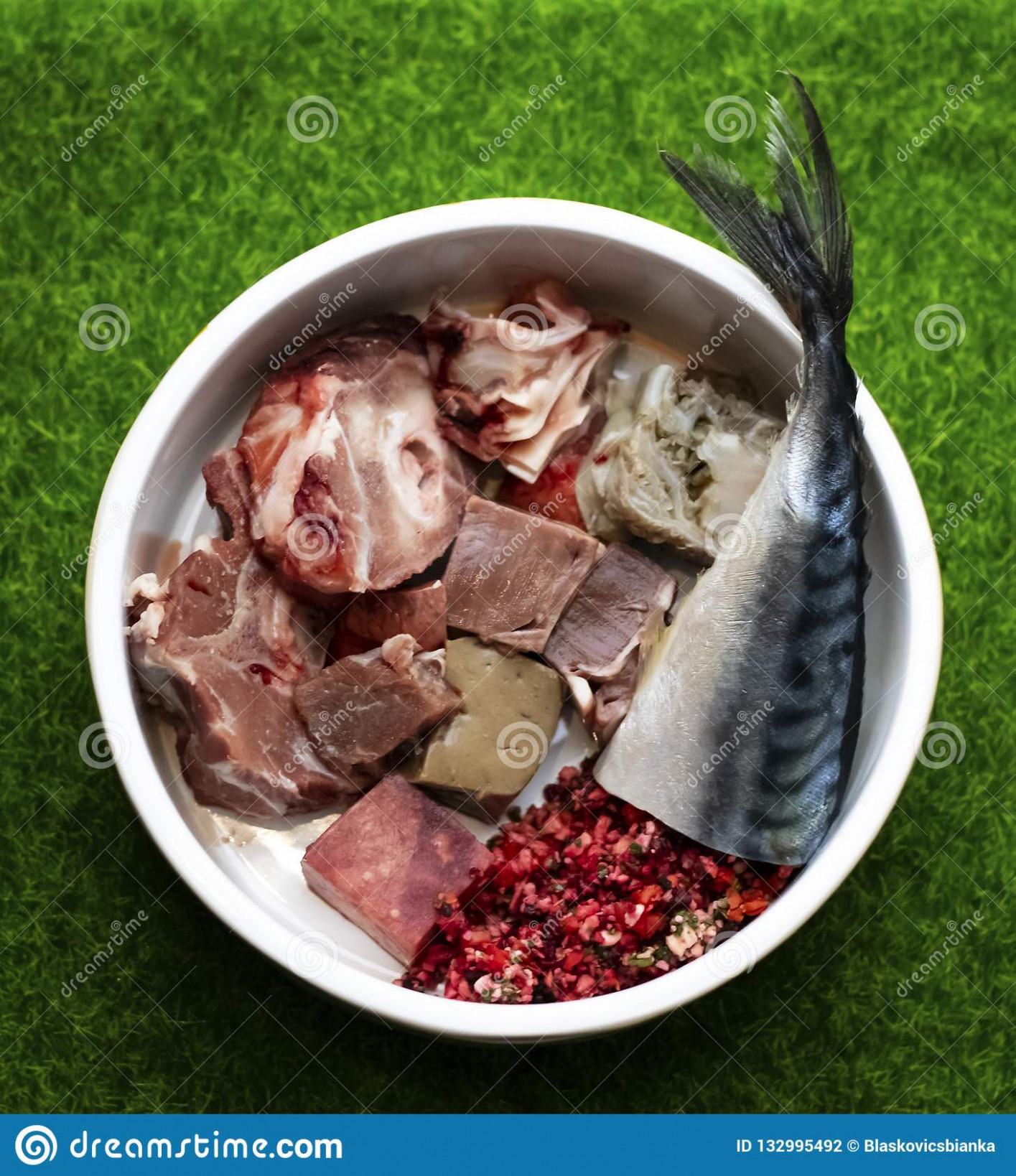 Raw pet food menu stock photo. Image of dogfood, food ..