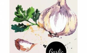 Recipe Journal: Watercolor Garlic Cooking Journal, Lined And Numbered Blank  Cookbook 11 X 11, 11 Pages (Recipe Journals) – Food Recipe Journal