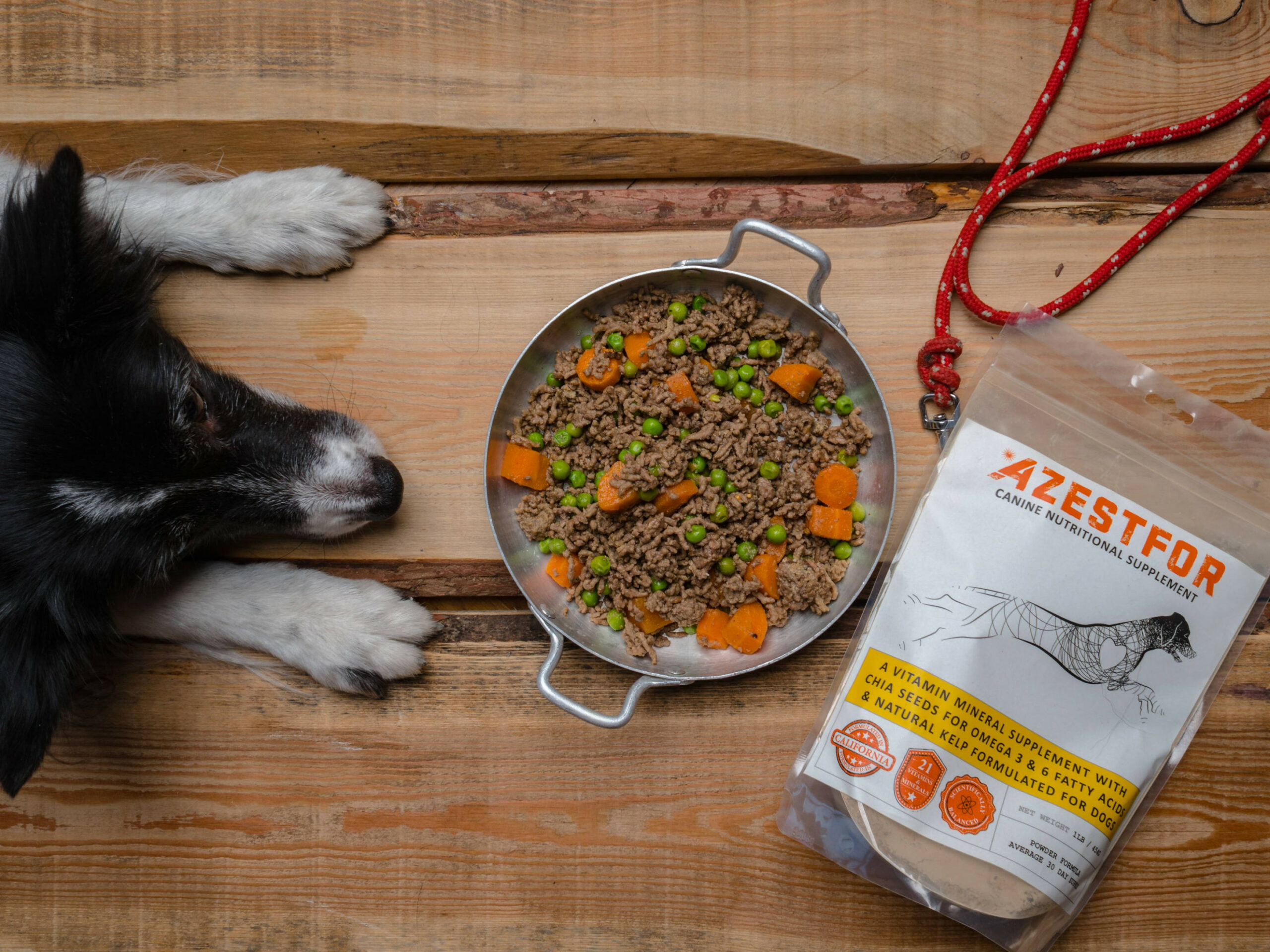 Recipes For Homemade Dog Food | Azestfor - Low Fat Dog Food Recipes